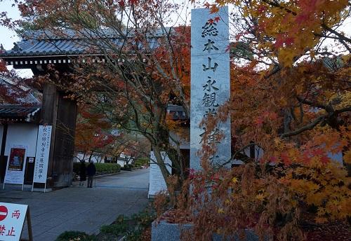 kyoutokouyou1411-005b.jpg