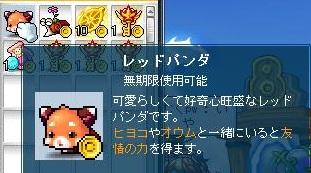 Maple121102_013824.jpg
