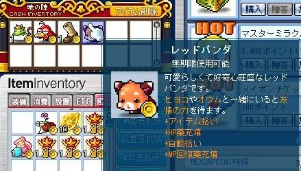 Maple121102_013847.jpg