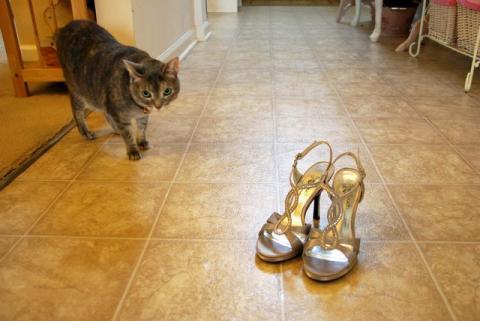 きらきらおでかけ靴