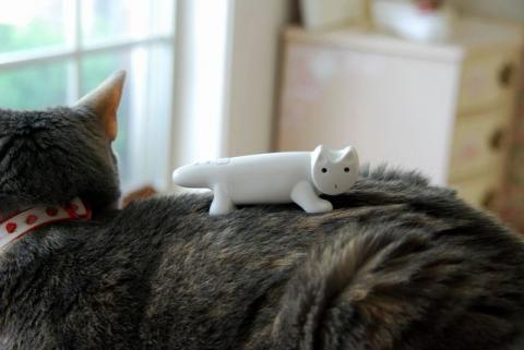 ネコノやまのぼり