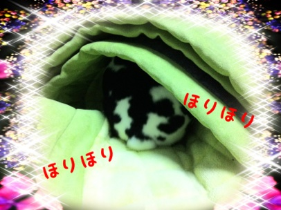 fc2blog_20121231145941f4e.jpg