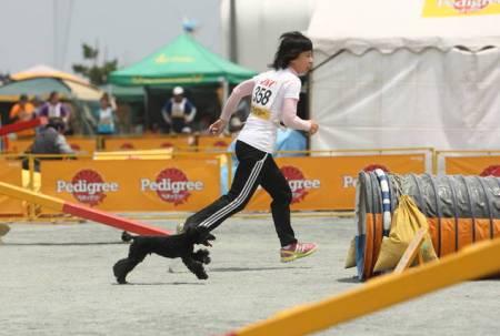 トム選手と走る!