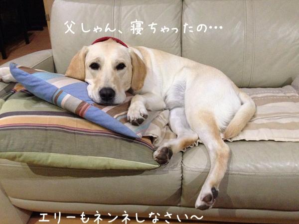 sofa1_20141105232019a2a.jpg