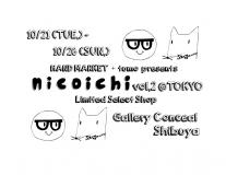 nicoichi.jpg