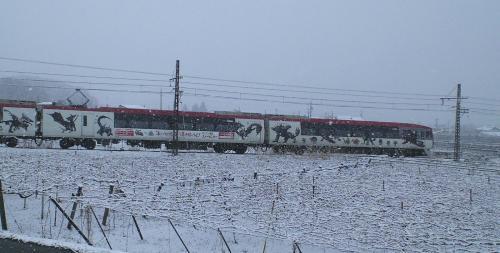 雪の中スノーモンキーモンハンコラボ号が通過(25.12.12)