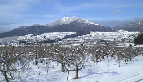リンゴ畑とよませの里と高社山(25.12.23)