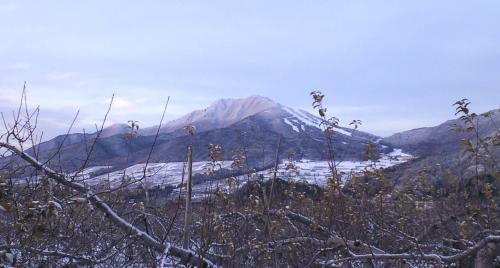 夕方の高社山(25.12.20)