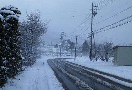 2日は雪降り(26.1.2)