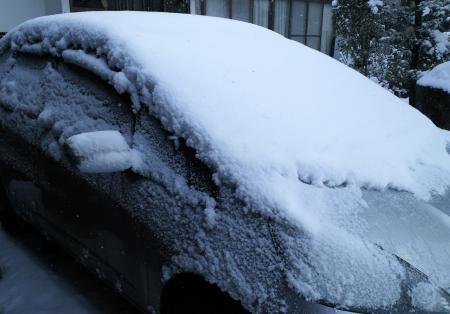 車も真っ白(26.1.2)