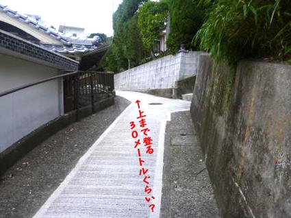 201211202.jpg