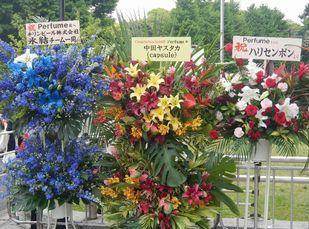 武道館4Days-1 (7)
