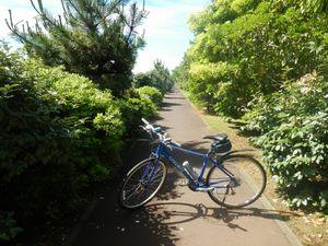 サイクリング6-10 (33)