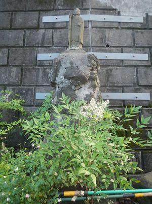 王子アジサイ6-18 (3)