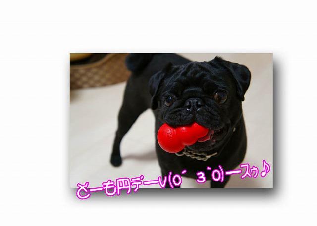 1_20120630104349.jpg