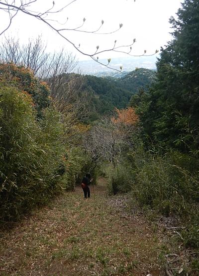 201304_ashitakayama_24.jpg
