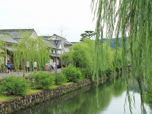 倉敷美観地区 白壁の建物と柳並木