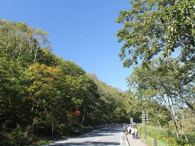志賀高原一沼付近の国道292号