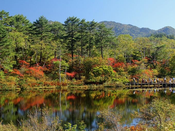 志賀高原 一沼の紅葉