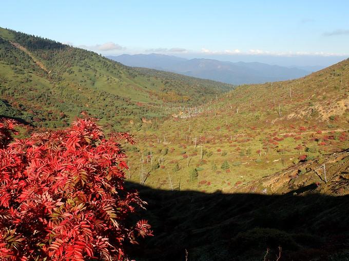 草津白根山の秋