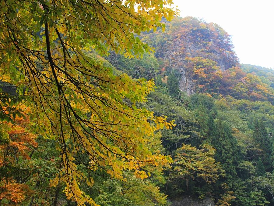 苗名滝周辺の紅葉