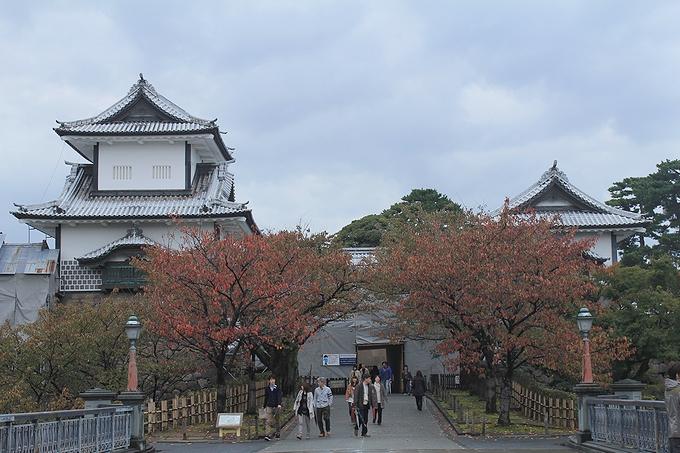 金沢城 桜の紅葉