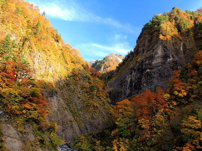 秋の白山スーパー林道 ふくべの大滝付近