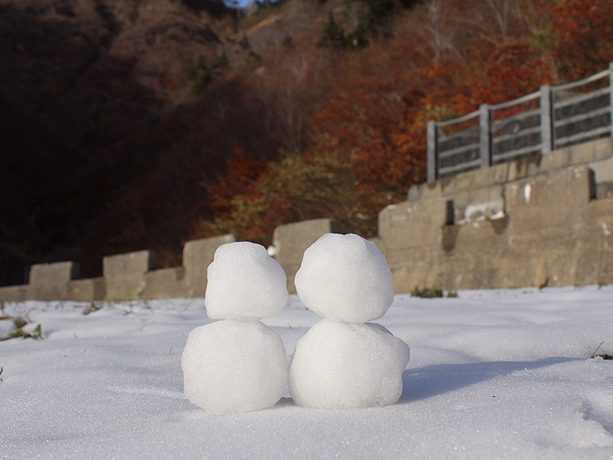 秋の白山スーパー林道 雪だるま
