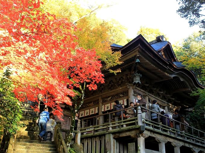 那谷寺の紅葉 本殿と紅いモミジ