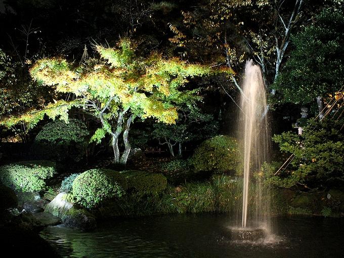 兼六園秋のライトアップ 噴水