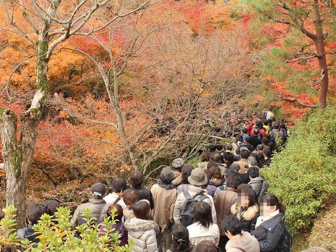 東福寺の紅葉 大混雑