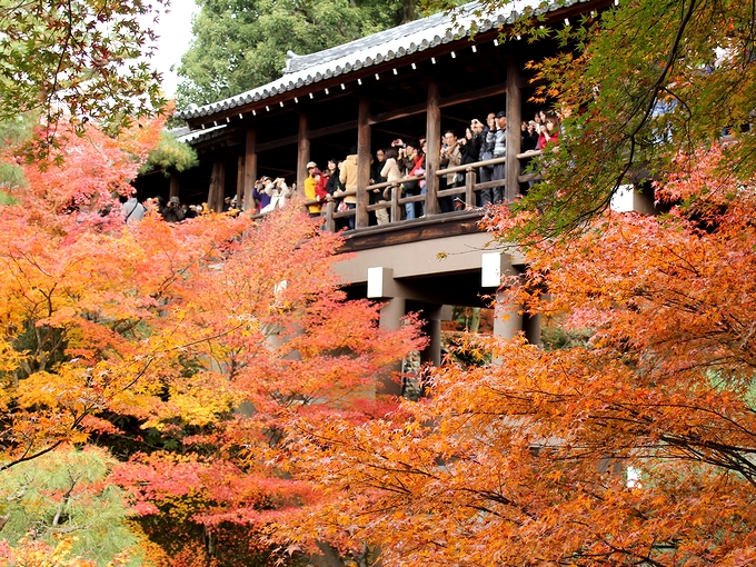東福寺の紅葉 通天橋の混雑