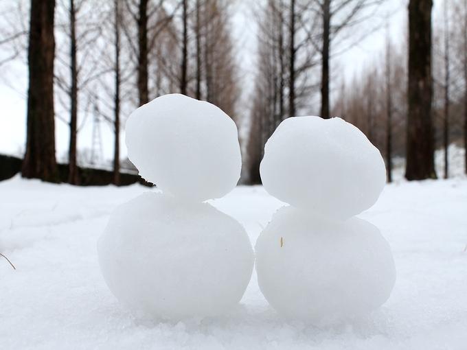 雪のメタセコイア並木 雪だるまと