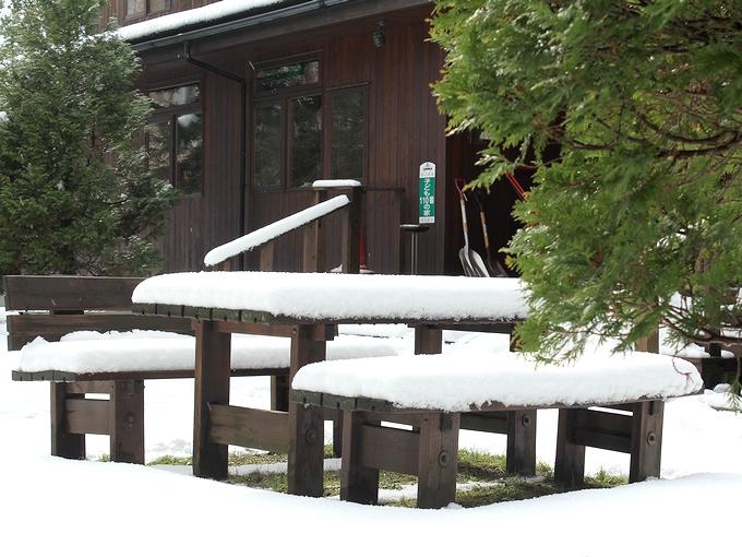 雪が積もりました 冬ですね~