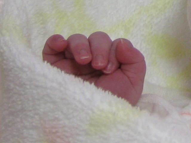 生まれたばかりの手