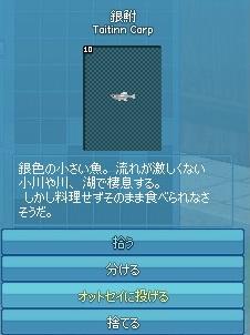 mabinogi_2014_12_19_013.jpg