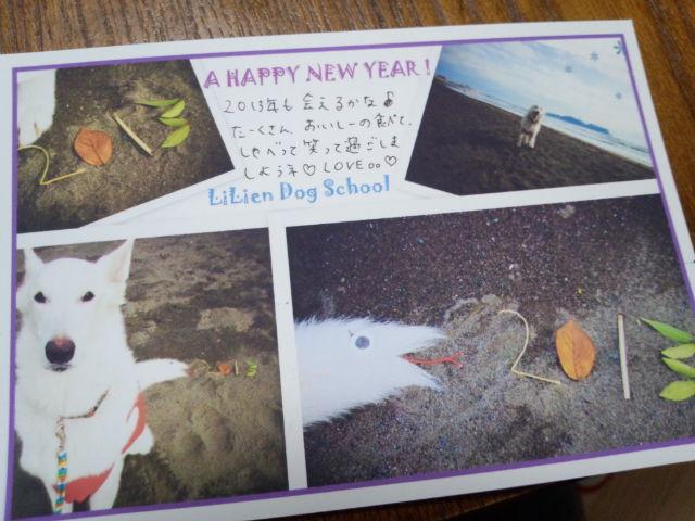 ホワイトスイスシェパード★ライチィくん★2013年年賀状