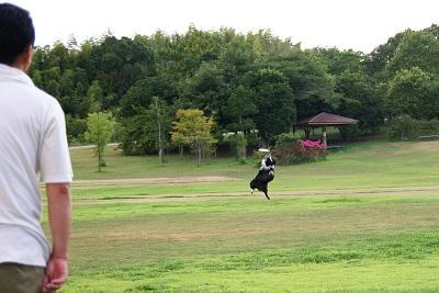 0825-5淡路島公園