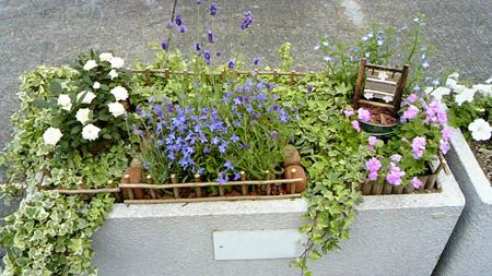 2012 6 6花壇