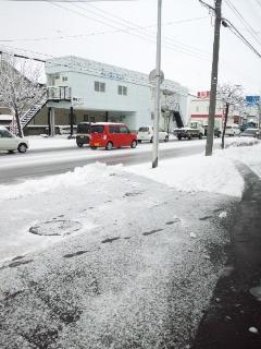 雪が降った~(><)
