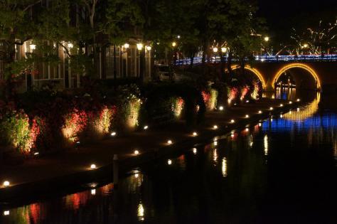 夜の薔薇の運河