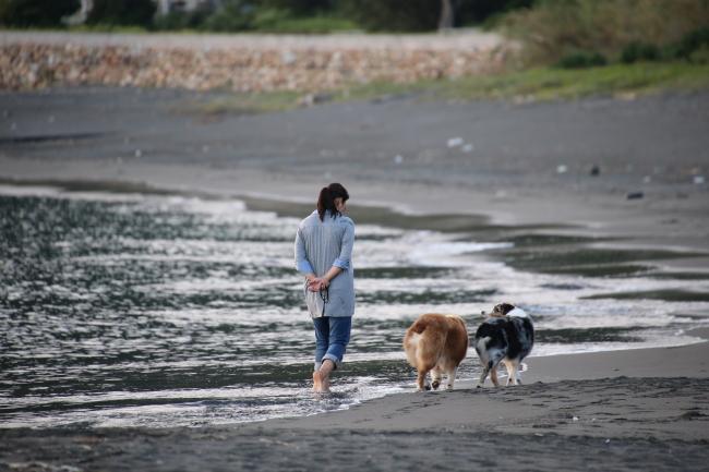 12.09.02.元猿海岸にて (74)_34