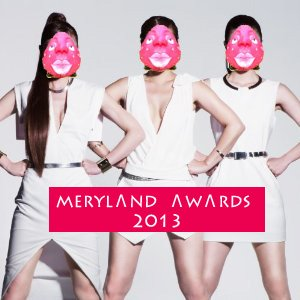 merylandawards2013