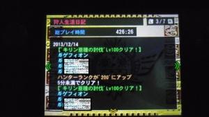 変換 ~ IMGP0934塗りつぶし