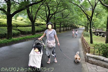 ageomaruyama03.jpg