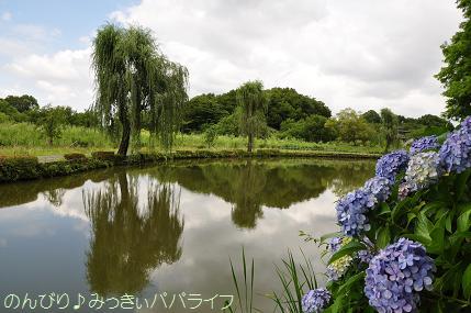 ageomaruyama05.jpg