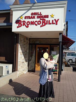 bronco1.jpg