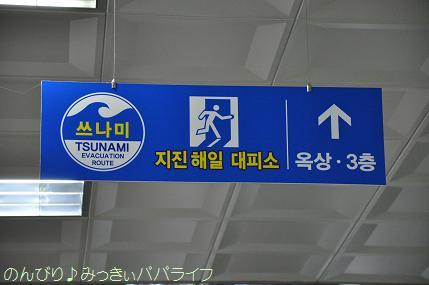 expo2012011.jpg