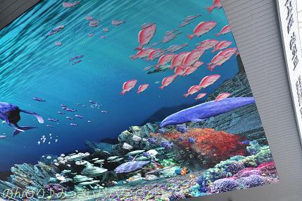 expo2012050.jpg