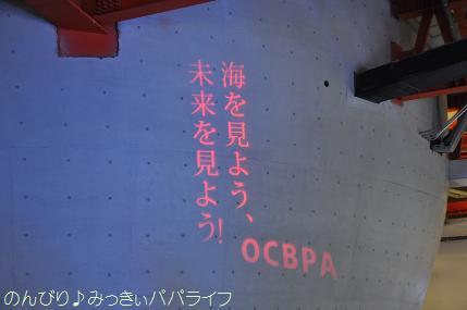 expo2012118.jpg
